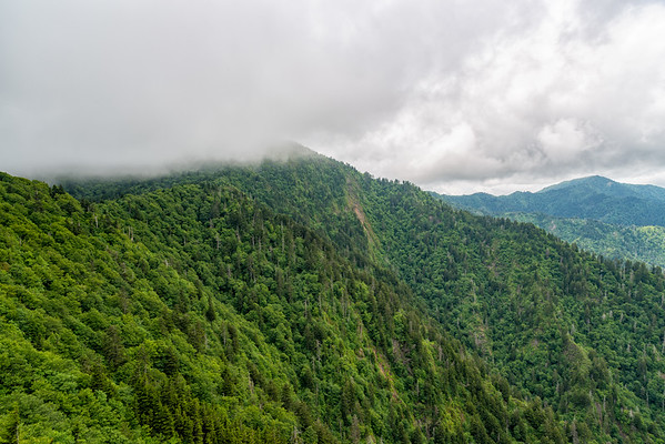 Charlie's Bunion - Great Smokey Mountains National Park - TN-5