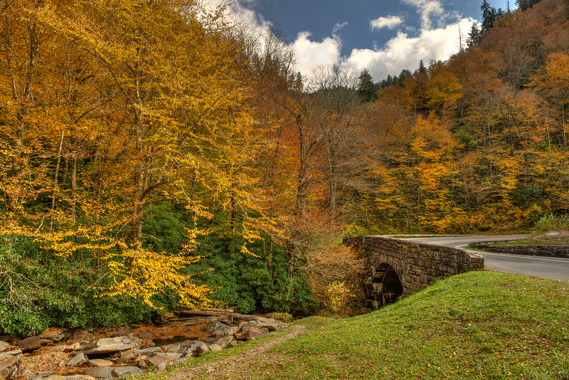 Fall At Newfound Gap Road
