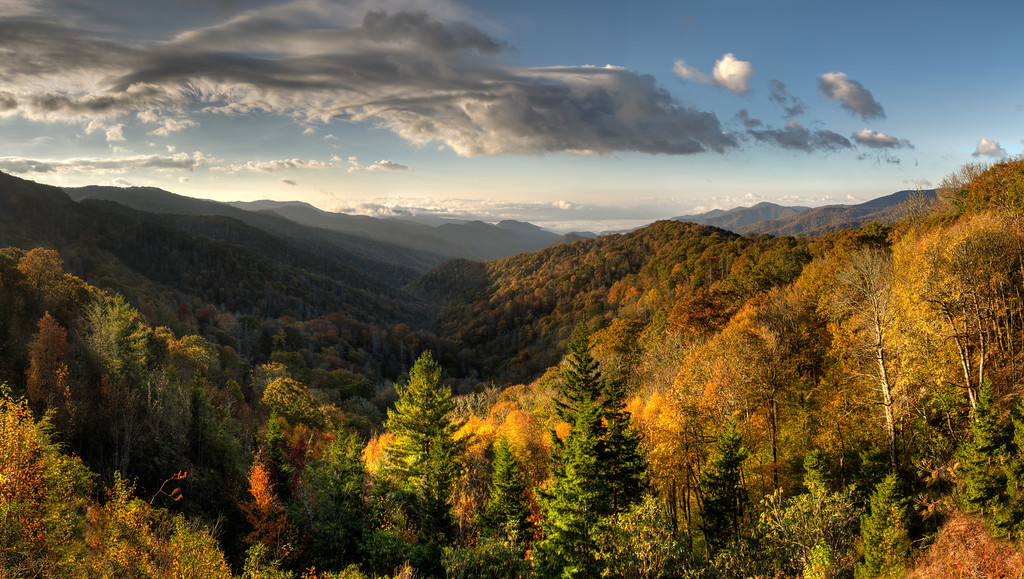 Fall At Oconaluftee Vally Overlook
