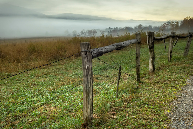 Foggy Morning in Cade's Cove