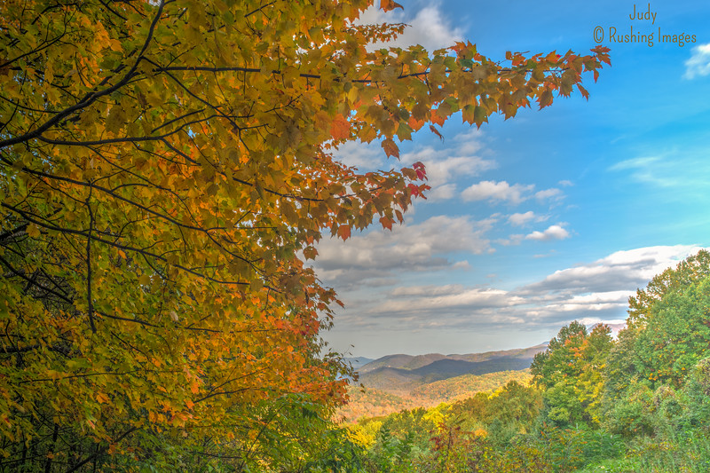 Fall Foilage at The Great Smoky Mountain National Park