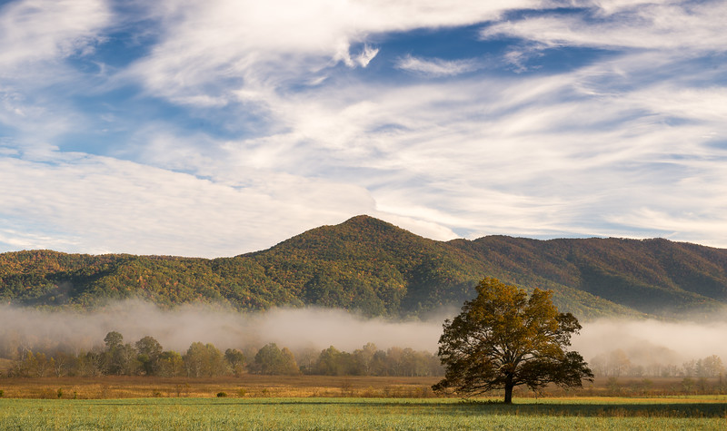 Mid Morning in Cades Cove