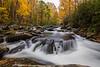 Tremont Cascades