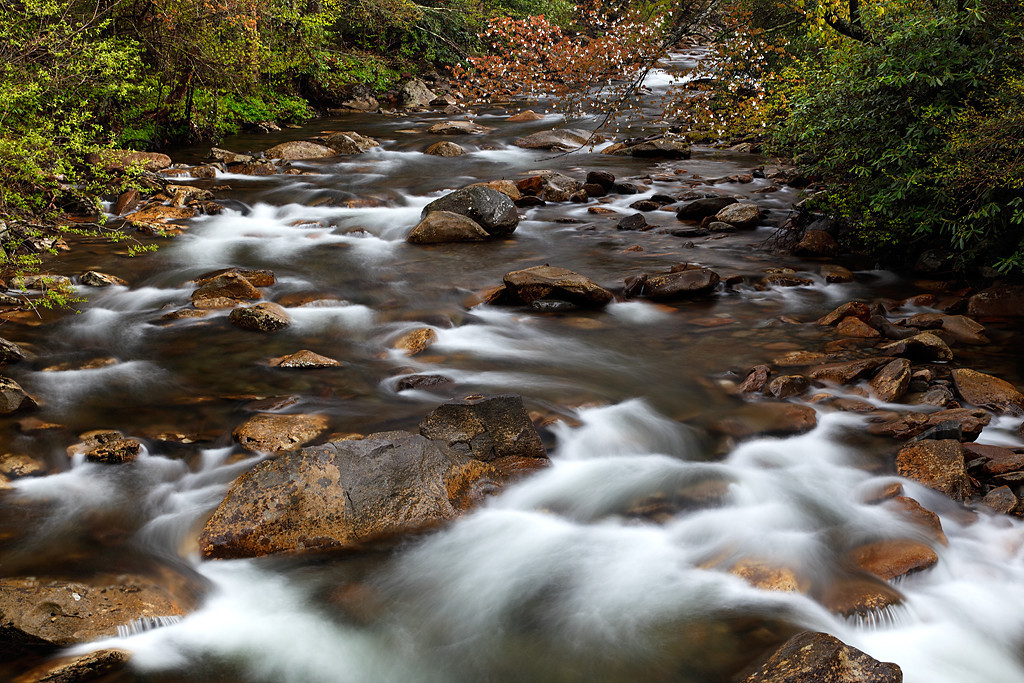 Runnin Down The Mountain - West Prong Little Pigeon River (Great Smoky Mountains National Park)