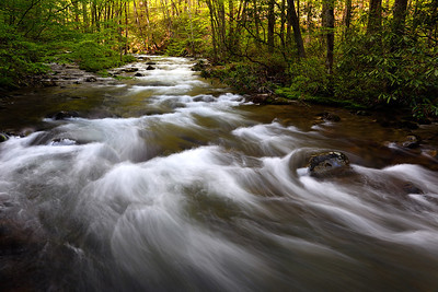 Spring Rush - Oconaluftee River (Great Smoky Mountains National Park)