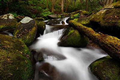 Log Jam - Roaring Fork Motor Trail (Great Smoky Mountains National Park)
