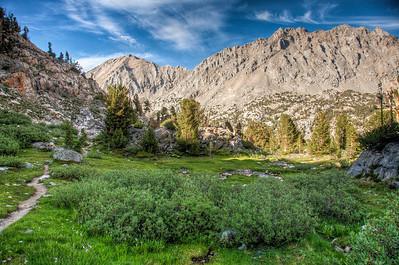 mountain-meadow-trail