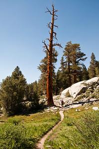 mountain-trail-hiker-2