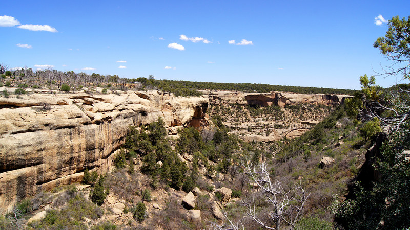 Wide view from the head of Cliff Canyon, Mesa Verde National Park, Colorado.