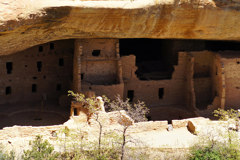 The Spruce Tree House dwellings sheltered from the bright afternoon sun; Mesa Verde National Park, Colorado.