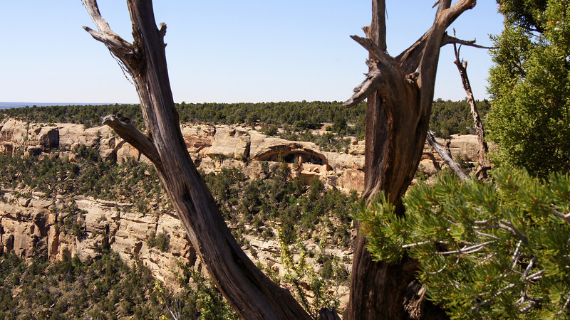 The Balcony House high in the cliff wall, Mesa Verde National Park, Colorado