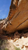 A massive rock shelf shelters the great Cliff Palace; Mesa Verde National Park, Colorado.