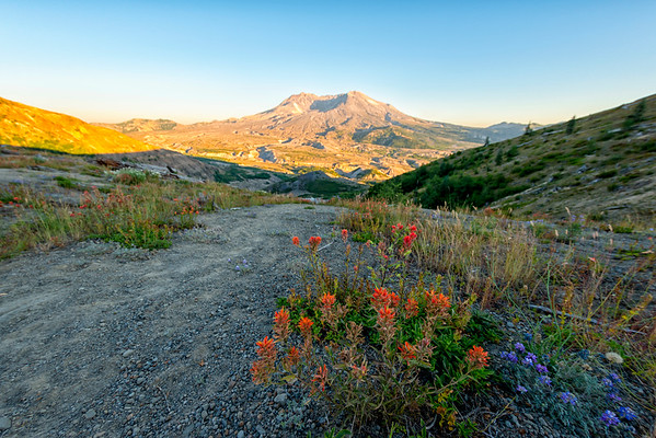 Mount St  Helens Sunset Flowers Fish Eye - Mount St  Helens-2