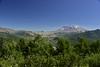 Mt St Helens NM WA north side (23)