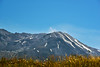 Mt St Helens NM WA north side (10)