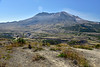 Mt St Helens NM WA north side (7)