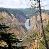 Yellowstone Grand Canyon, Lower Falls. Artists Point