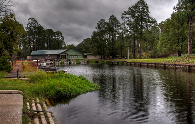 okefenokee-swamp-lodge