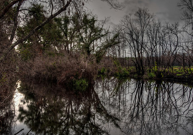 swamp-canal-2