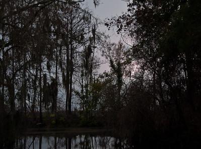 swamp-lightning-2