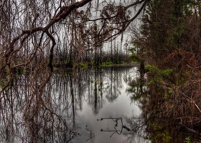 suwannee-canal