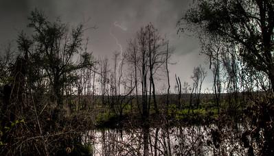 swamp-lightning