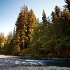 Hoh River, Olympic National Forest, October 2009
