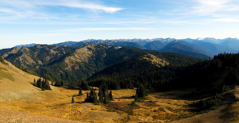 Hurricane Ridge area, Olympic National Park, October 2009