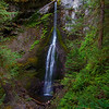 Marymere Falls, Barnes Creek, Olympic National Park. October 2009