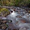 Barnes Creek, Olympic National Park.  October 2009