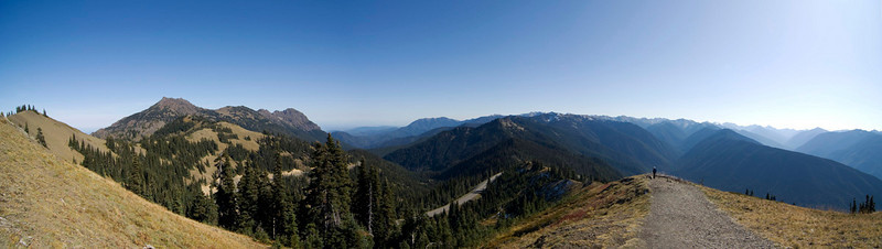 Hurricane Ridge, panoramic.  (3 shots blended together.)