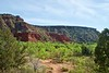 Spring foliage complements the colorful rock formations along the GSL trail.