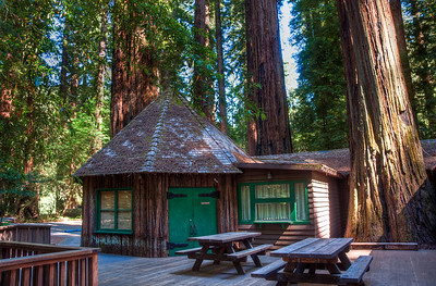 redwood-visitor-center-2