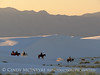 White Sands Natl Mon NM horse riders (10)