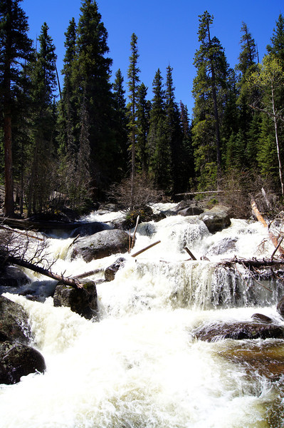 Rushing stream along the trail to Ouzel Falls; Rocky Mountain National Park, Colorado.