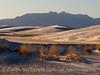 White Sands Natl Mon NM evening (17)