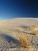 White Sands Natl Mon NM evening (7)