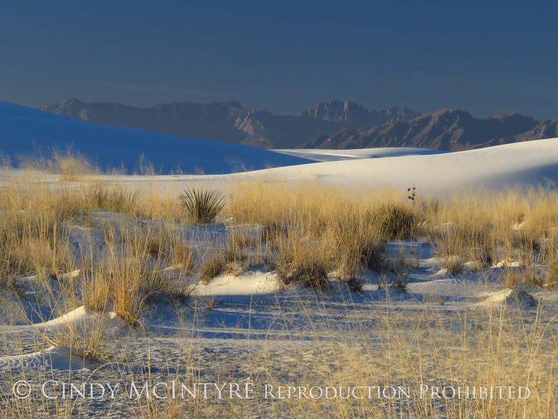 White Sands Natl Mon NM, dawn (113)