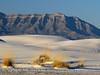 White Sands Natl Mon NM, dawn (107)