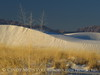 White Sands Natl Mon NM, dawn (97)