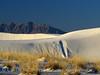 White Sands Natl Mon NM, dawn (100)