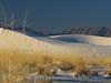 White Sands Natl Mon NM, dawn (98)