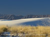 White Sands Natl Mon NM, dawn (95)