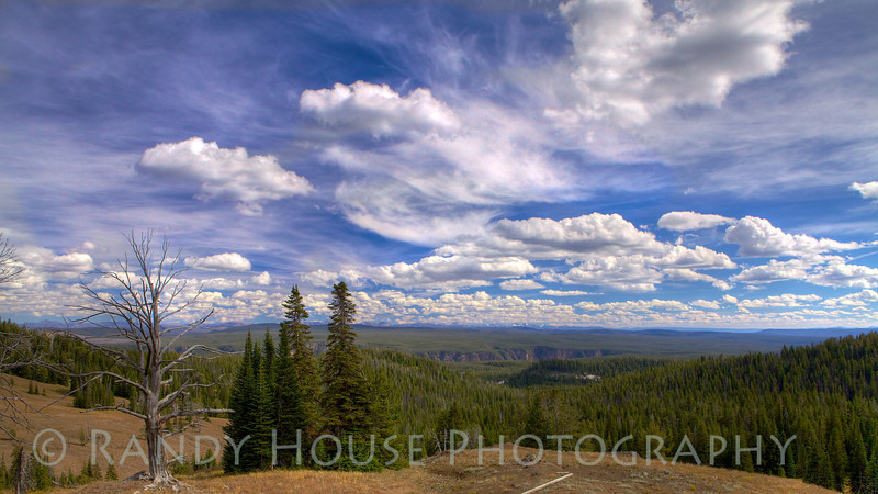 View from Mt Washburn. The Grand Canyon of the Yellowstone is visible below.
