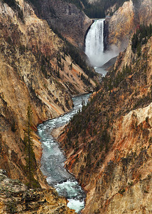 Artisan Gold II - Grand Canyon of the Yellowstone (Yellowstone National Park)