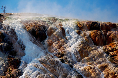 Mammoth Hot Springs (Detail)