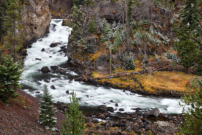 Dusted - Firehole River (Yellowstone National Park)