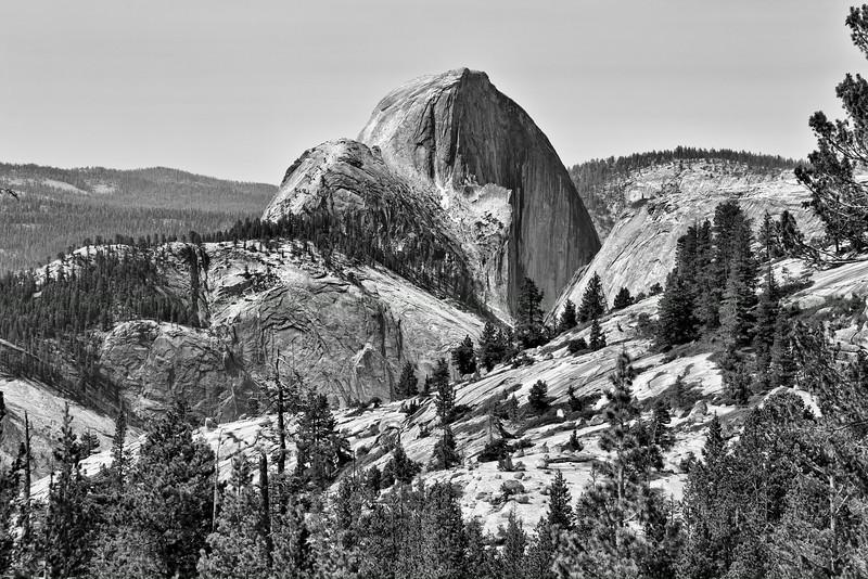 Half Dome in Black and White