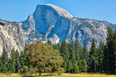 yosemite-half-dome-meadow-2