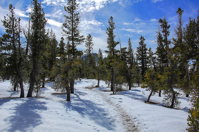 snowy-mountain-trail